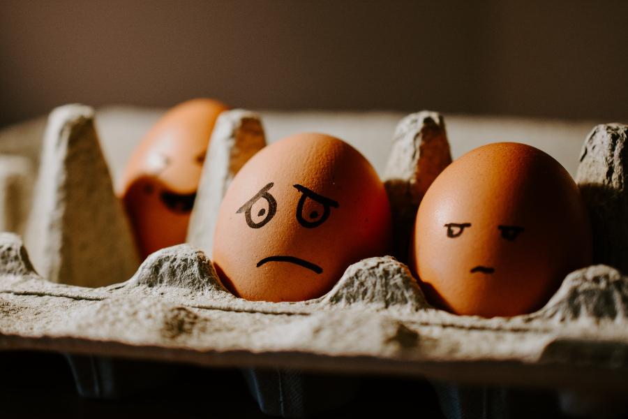 Eggs in carton looking askance